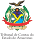 http://www.tce.am.gov.br/